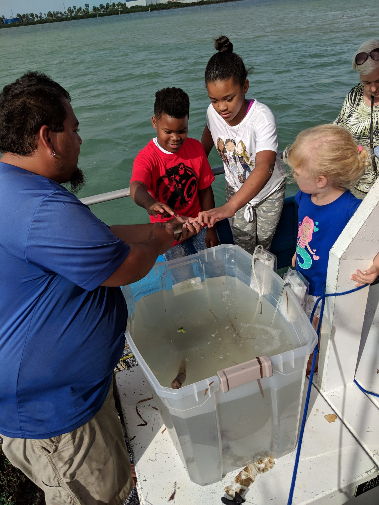 kids gathered around a plastic tub filled with sea life on an Osprey eco cruise