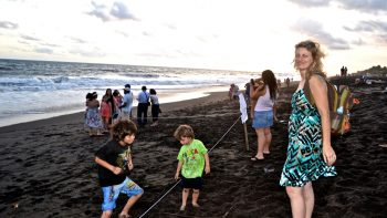 Eco Family Fun - Releasing Baby Sea Turtles