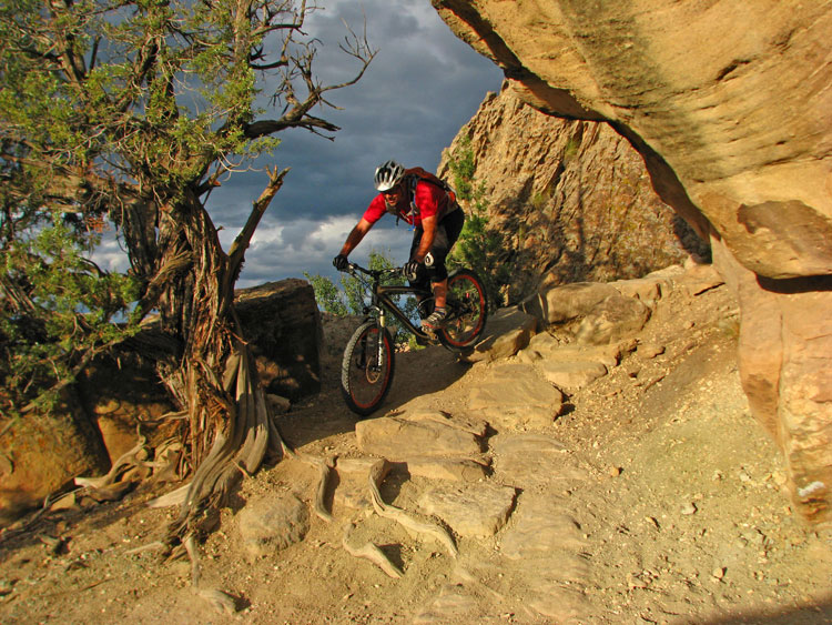 Mountain biking is one of many free things to do in Grand Junction.