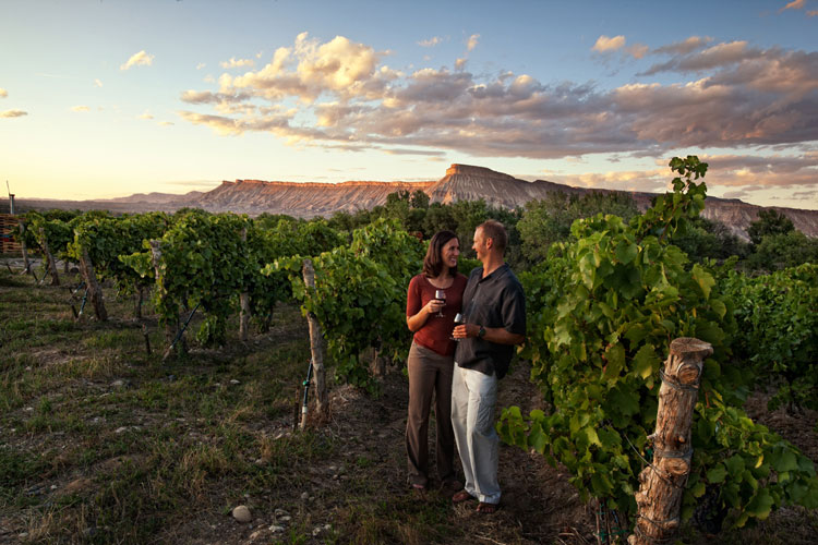 Some Grand Junction wineries offer free wine tastings, one of many free things to do in Gand Junction.