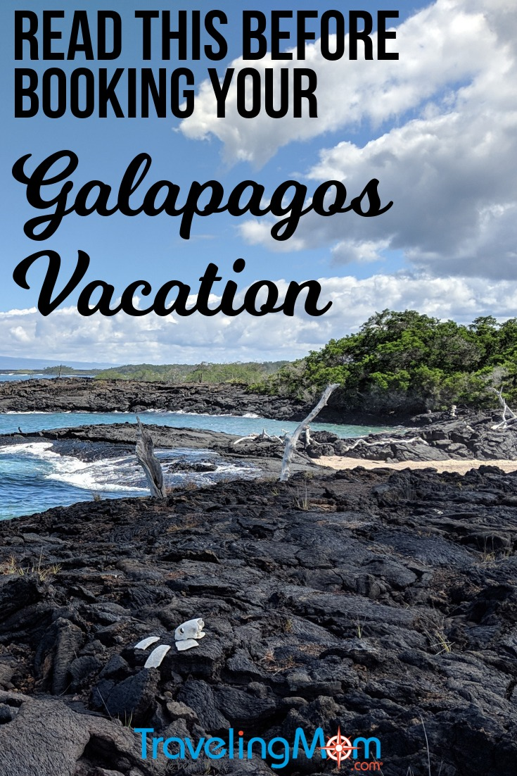 A #cruise to the #Galapagos #Islands is not your average #family #vacation. Read this before you book!