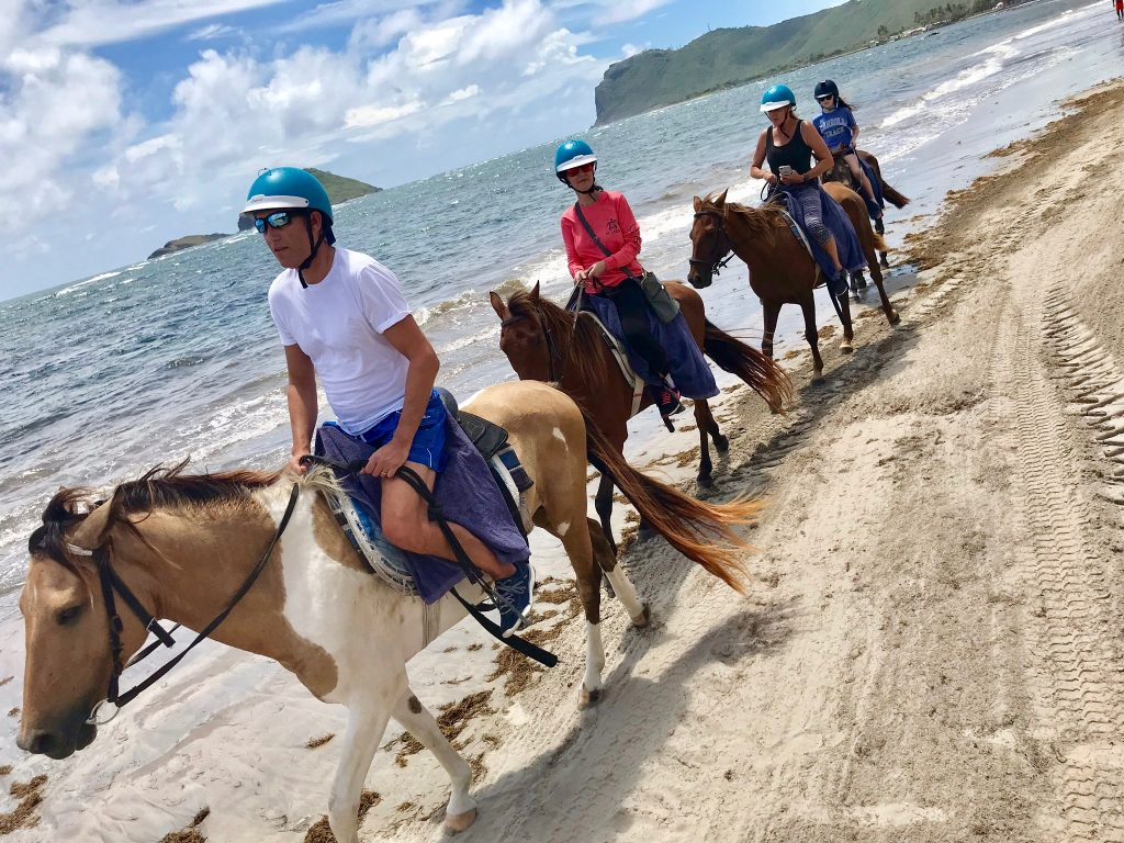 10 Things to Do in St. Lucia - Horse Back Riding along the beach