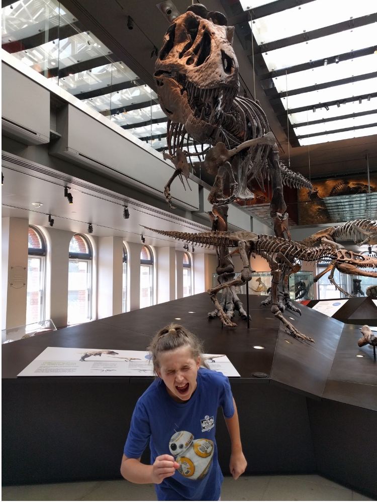 Travel as education: The Natural History Museum of Los Angeles