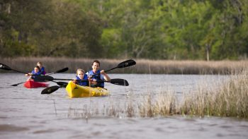Biloxi with kids says get out on the water.