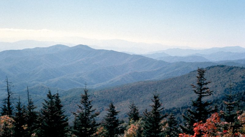 Do you like to hike? It's one of the top free things to do in Sevierville, TN