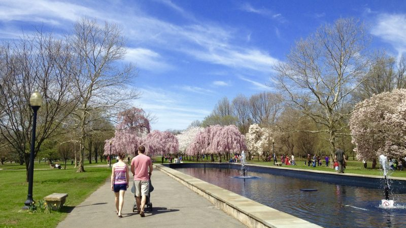 The Horticultural Center in West Philly is free - and a less crowded place to enjoy cherry blossoms in Philadelphia.