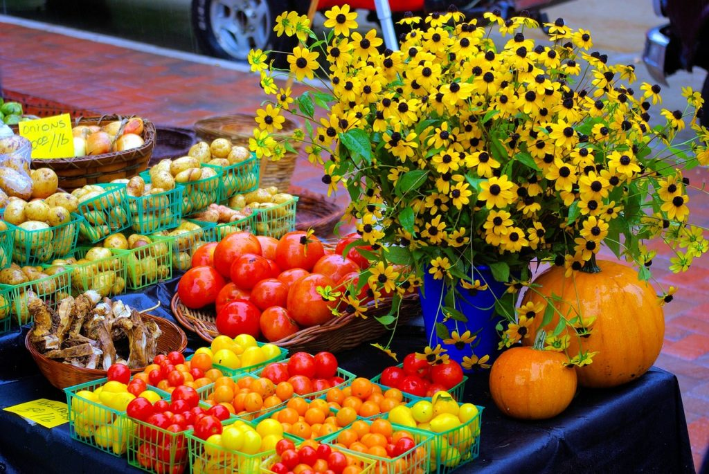 One tasty thing to do in Madison WI? Hit the Farmer's Market on Saturdays on State Street.