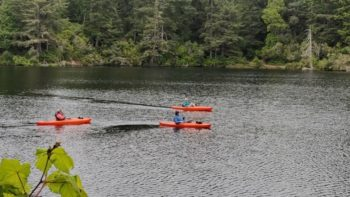 Lake Marie Kayakers