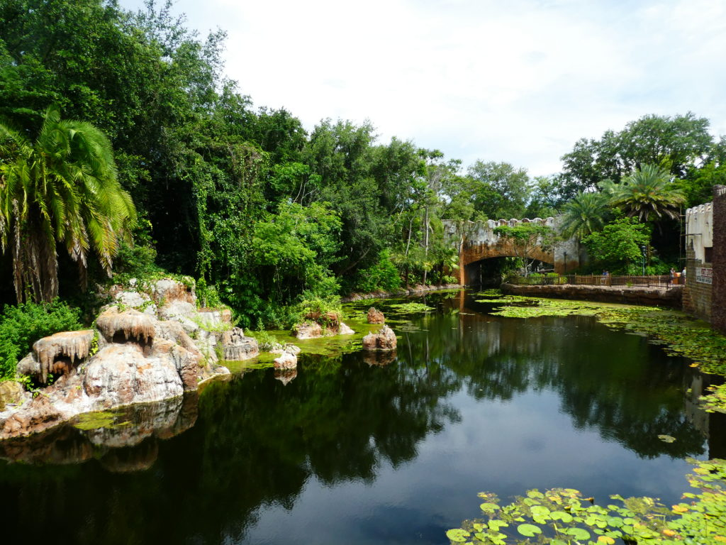 Scenery along the waterway path to Pandora in Disney's Animal Kingdom