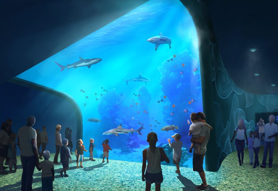 St. Louis Aquarium Rendering