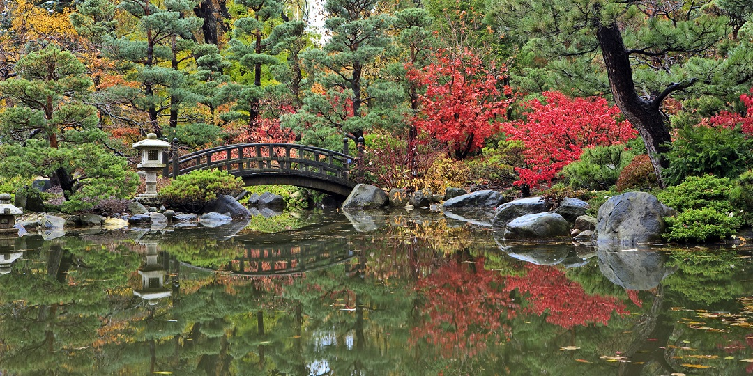 Looking for things to do in Rockford IL - You do not want to miss the award winning Anderson Japanese Gardens.