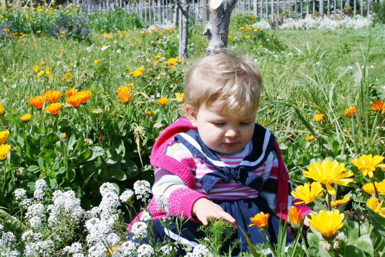 Travel with toddlers and babies