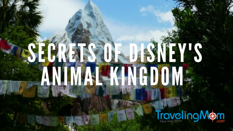Disney's Animal Kingdom Secrets
