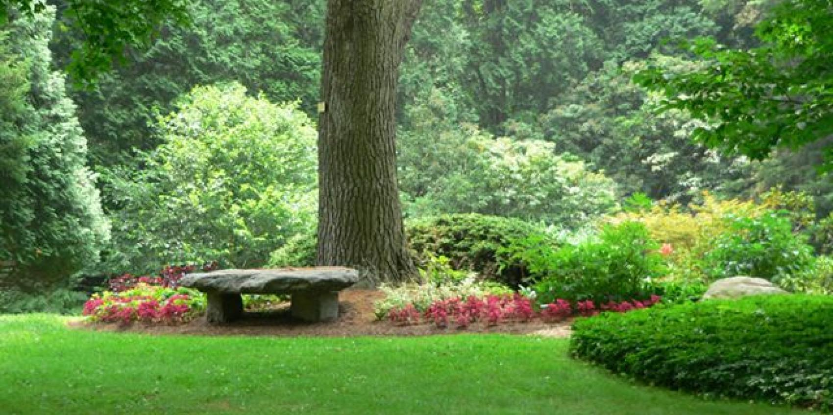 Free things to do in Stamford CT - the Bartlett Arboretum
