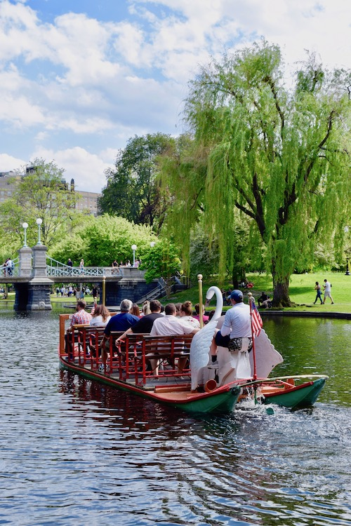 Boston Swan Boat in the Public Garden in Massachusetts