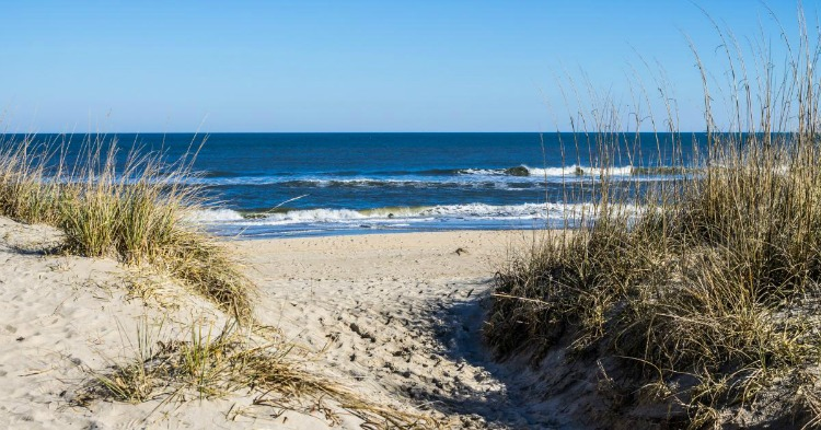 Beach time is always a great choice among the free things to do in Virginia Beach.