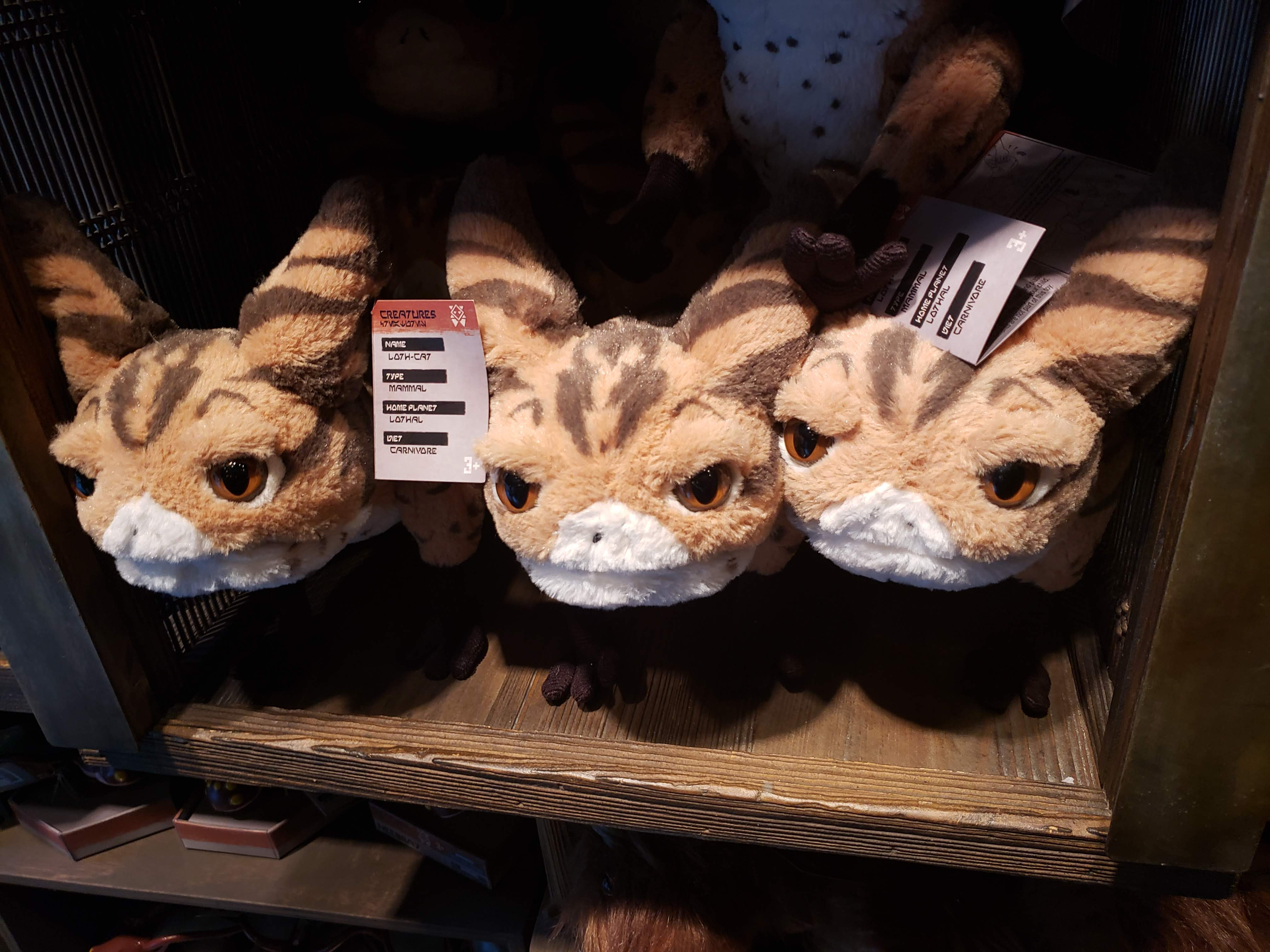 Visit the Creature Stall in Galaxy's Edge to adopt your own Loth-Cat.
