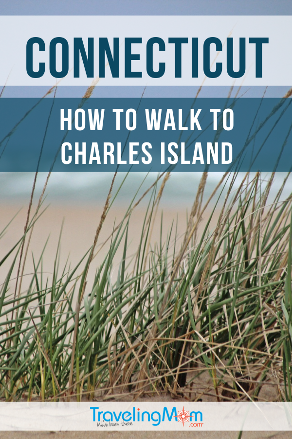 Walk to an island? Yes! Before you begin the walk to Charles Island (near Milford Connecticut) these are the important must-read safety tips. #TMOM #Connecticut #CharlesIsland | TravelingMom