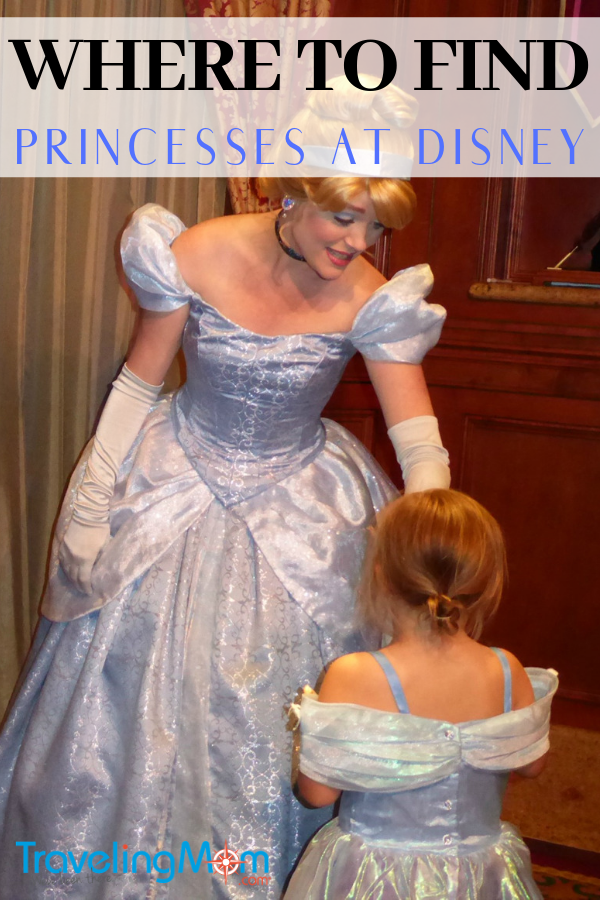 princesses at disney cinderella