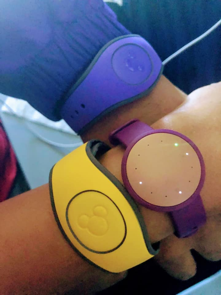 Solid colored MagicBands are available for free with resort reservations.