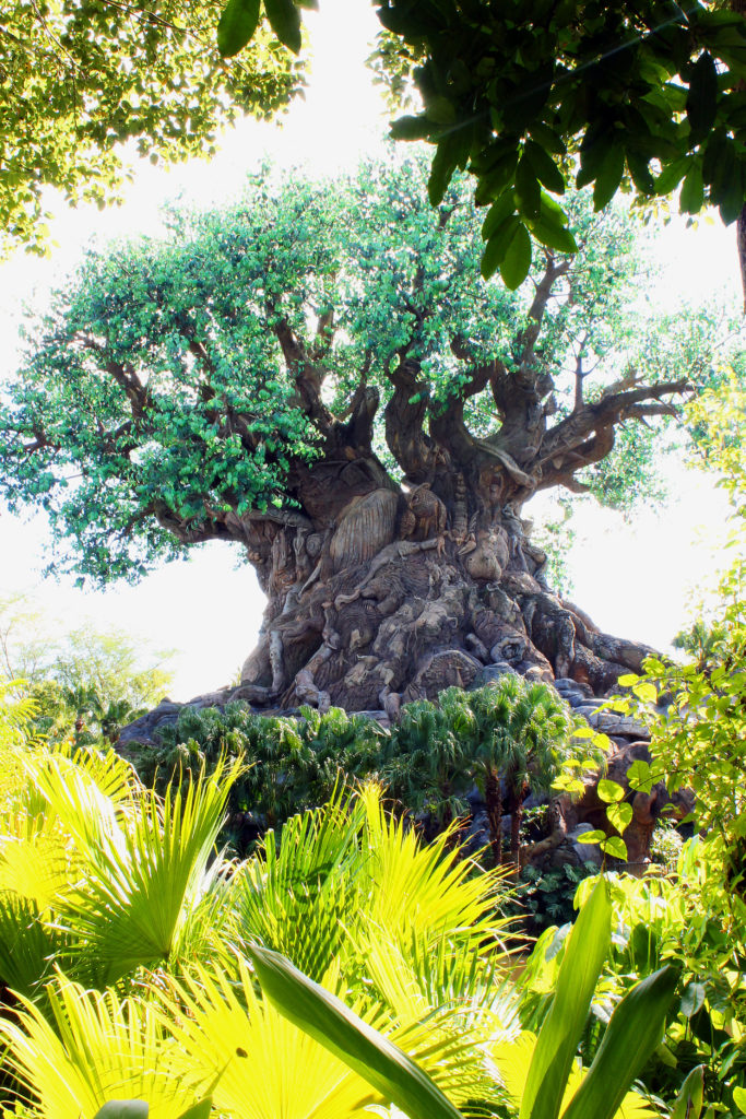 Visiting another park like Disney Animal Kingdom is easy with a park hopper ticket.