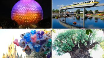 Collage of 4 parks at Walt Disney World