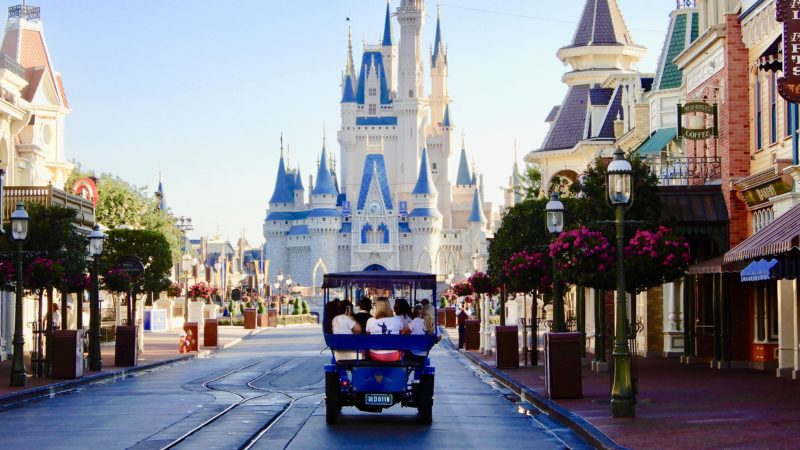Find out how you can add some extra magic to your next Disney vacation with one of the many Walt Disney World Tours.