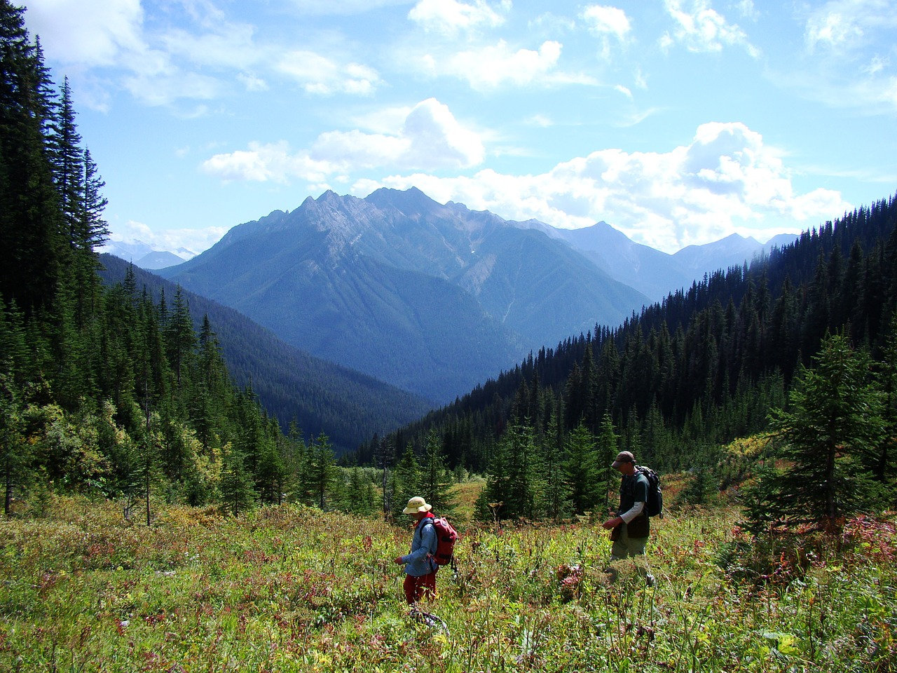 national park free days for families