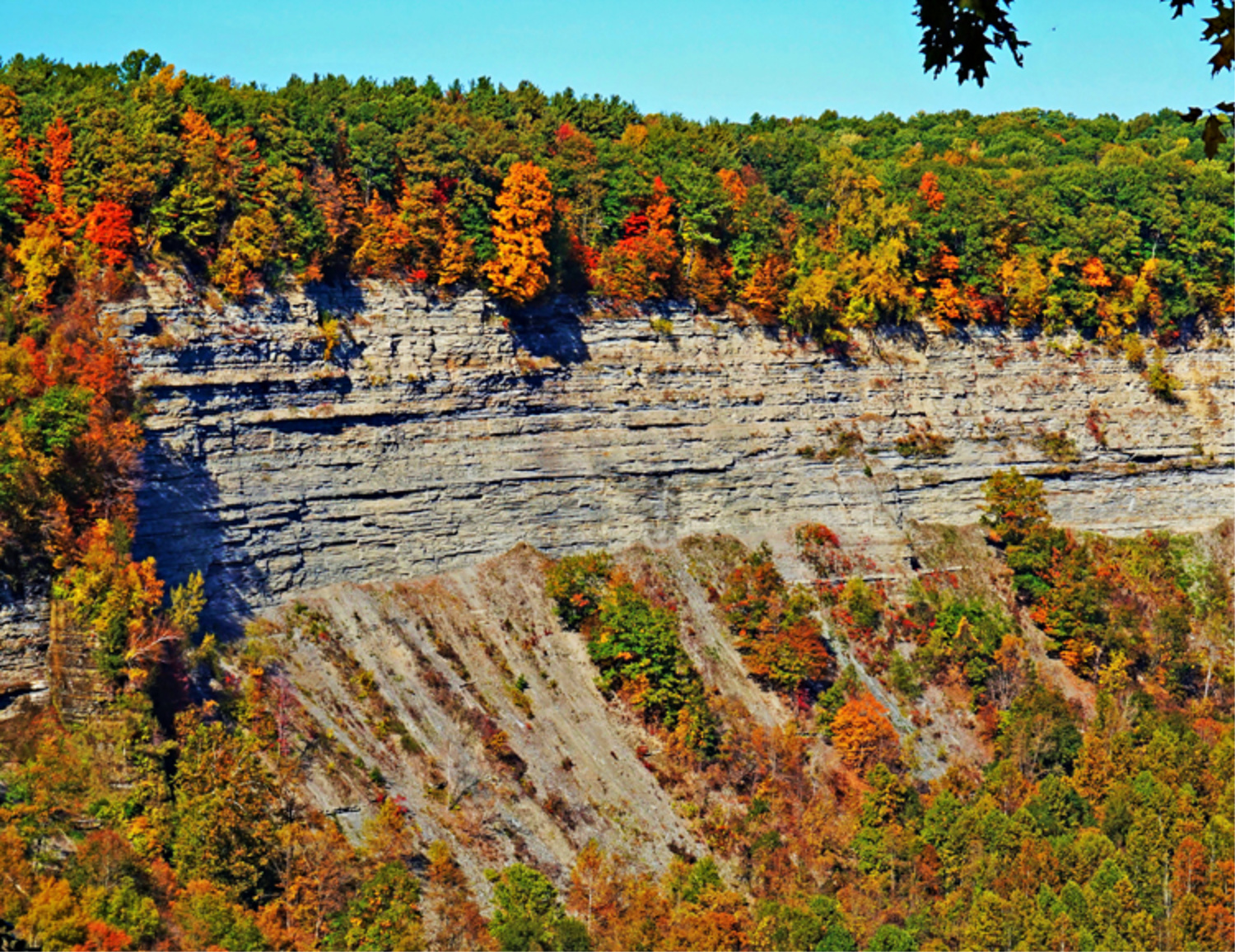 Letchworth State Park. Rocky canyon decorated with leaves.