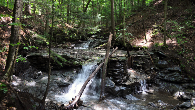 Free things to do in New Hampshire