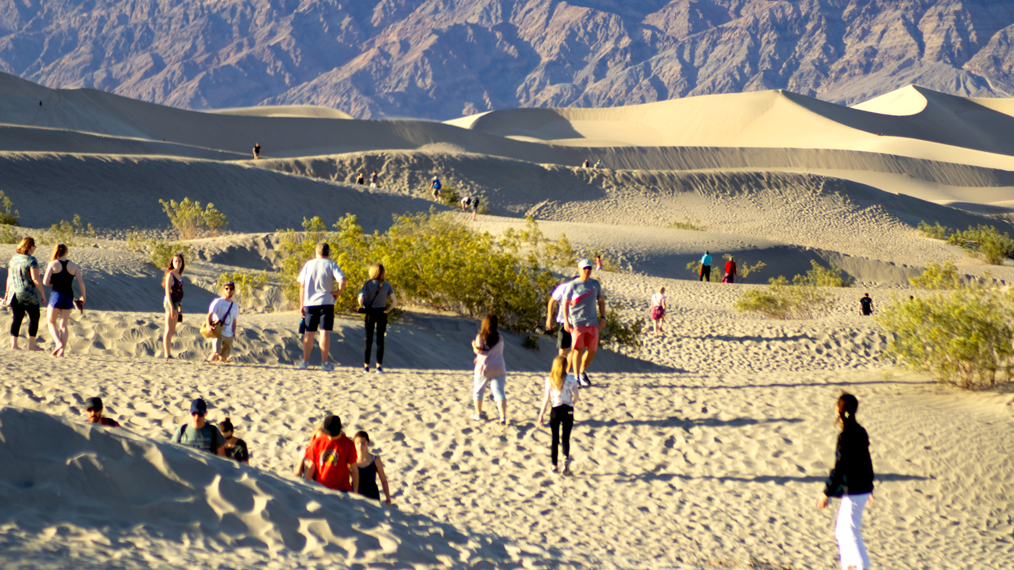 Photo of families playing at Mesquite Dunes
