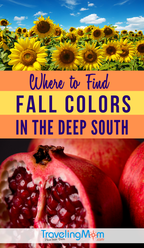 "Forget about the leaves changing color in Autumn, those in the deep south look for other signs of fall! Find out where southerners find fall colors without any ""leaf peeping"". #TMOM #Fall #USA 