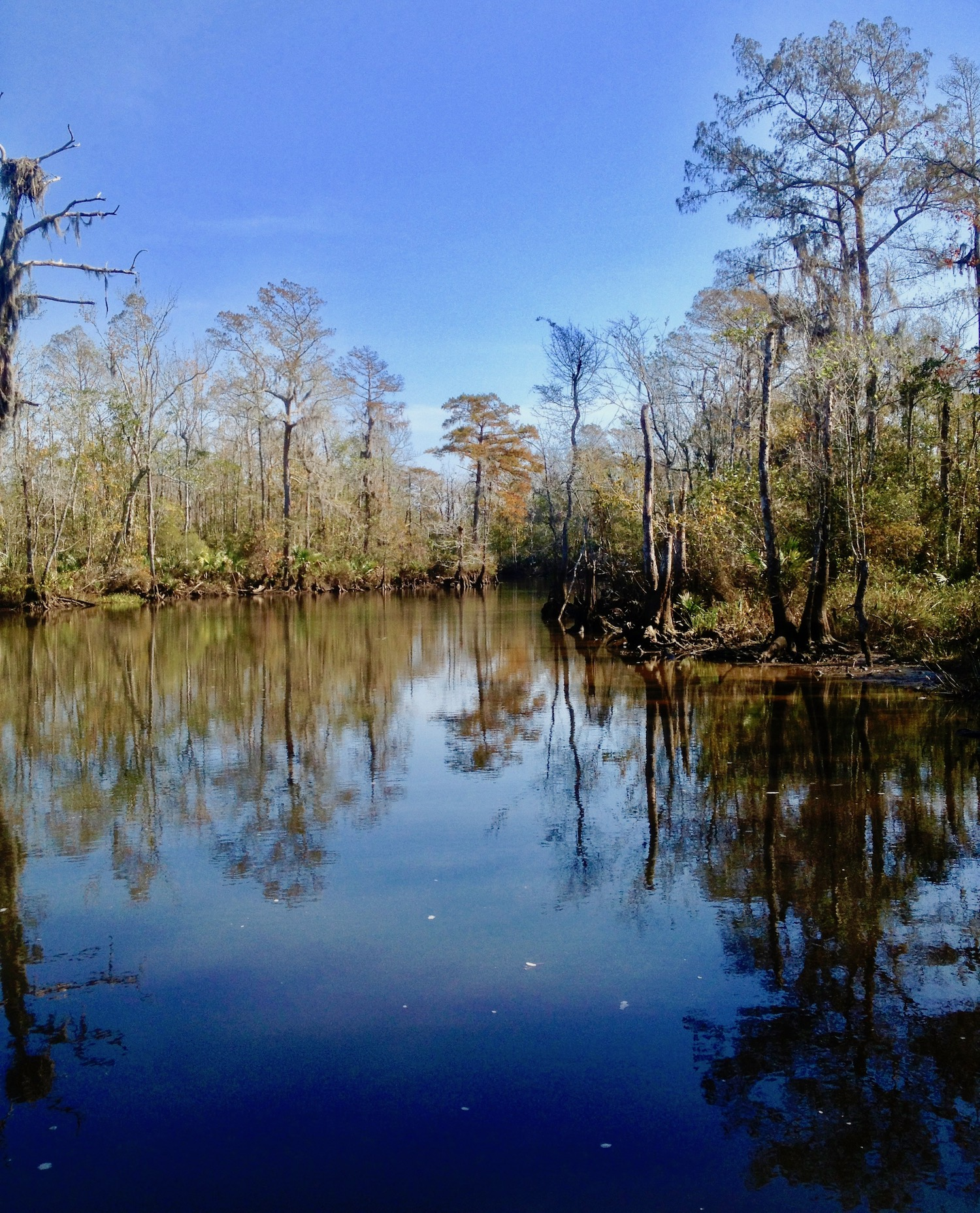 Autumn colors in the south involve reflections in deep blue waters.