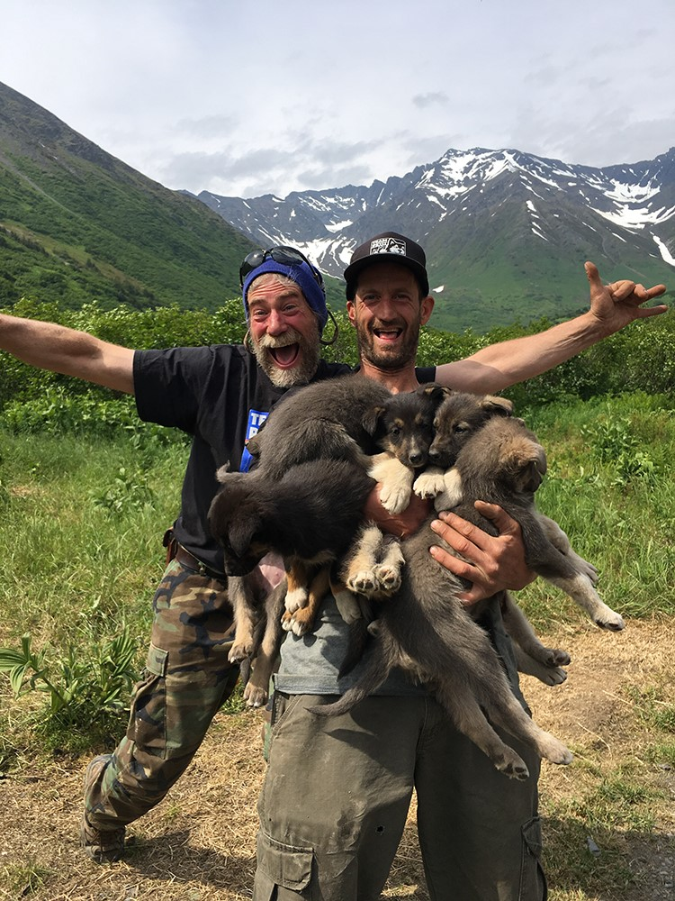 Staff and puppies for dog sledding in Alaska.