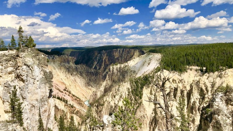 Things to do near Yellowstone National Park include hiking, museums, ATV, grizzly bear sanctuary, and more.