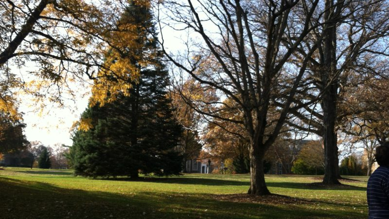 Beautiful Parent's Weekend fall foliage