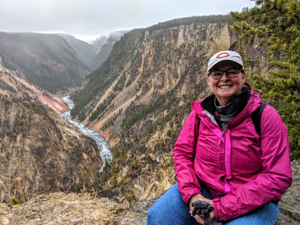 Take a short hike from Artist Point to this picture-perfect spot at the Grand Canyon of the Yellowstone.