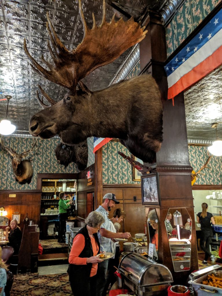 Taxidermied moose head at the Irma Hotel in Cody WY.