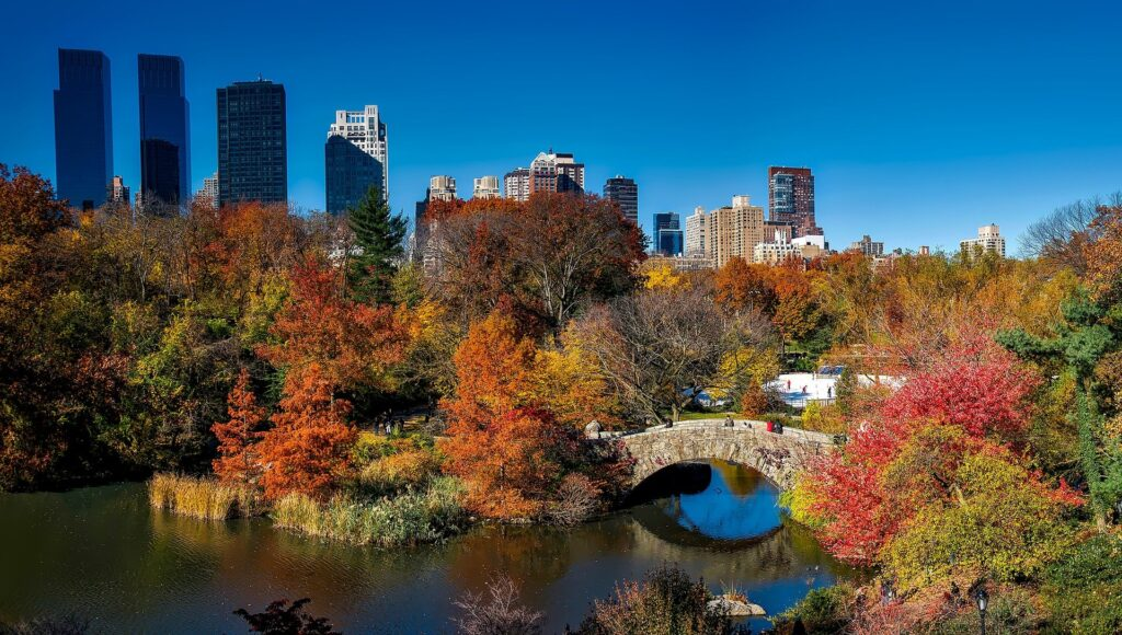 Fall colors in New York City's Central Park