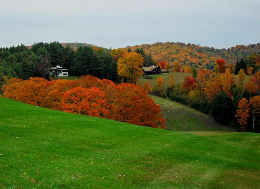 fall colors northeast, rolling green vermont hills with bright patches of autumn leaves in bright orange and yellow. A cabin is seen off in the distance.