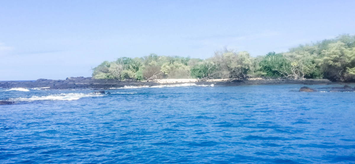 Snorkel tours are a good way to see sea life up close as well as Big Island helicopter tours.