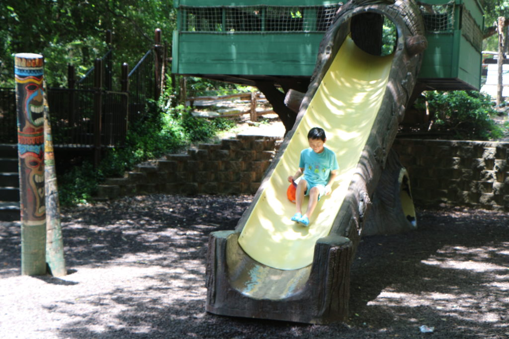 Looking for things to do in Waco Texas - Check out Cameron Park Zoo
