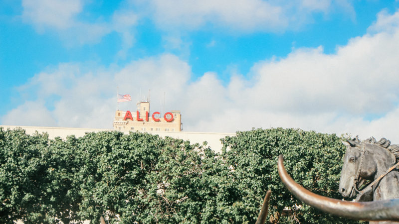 There are lots of things to do in Waco Texas besides Magnolia Market
