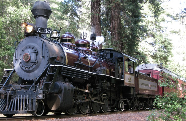 Don't miss the Skunk Train along the Mendocino coast.