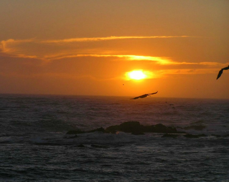 See beautiful sunsets along the Mendocino coast.