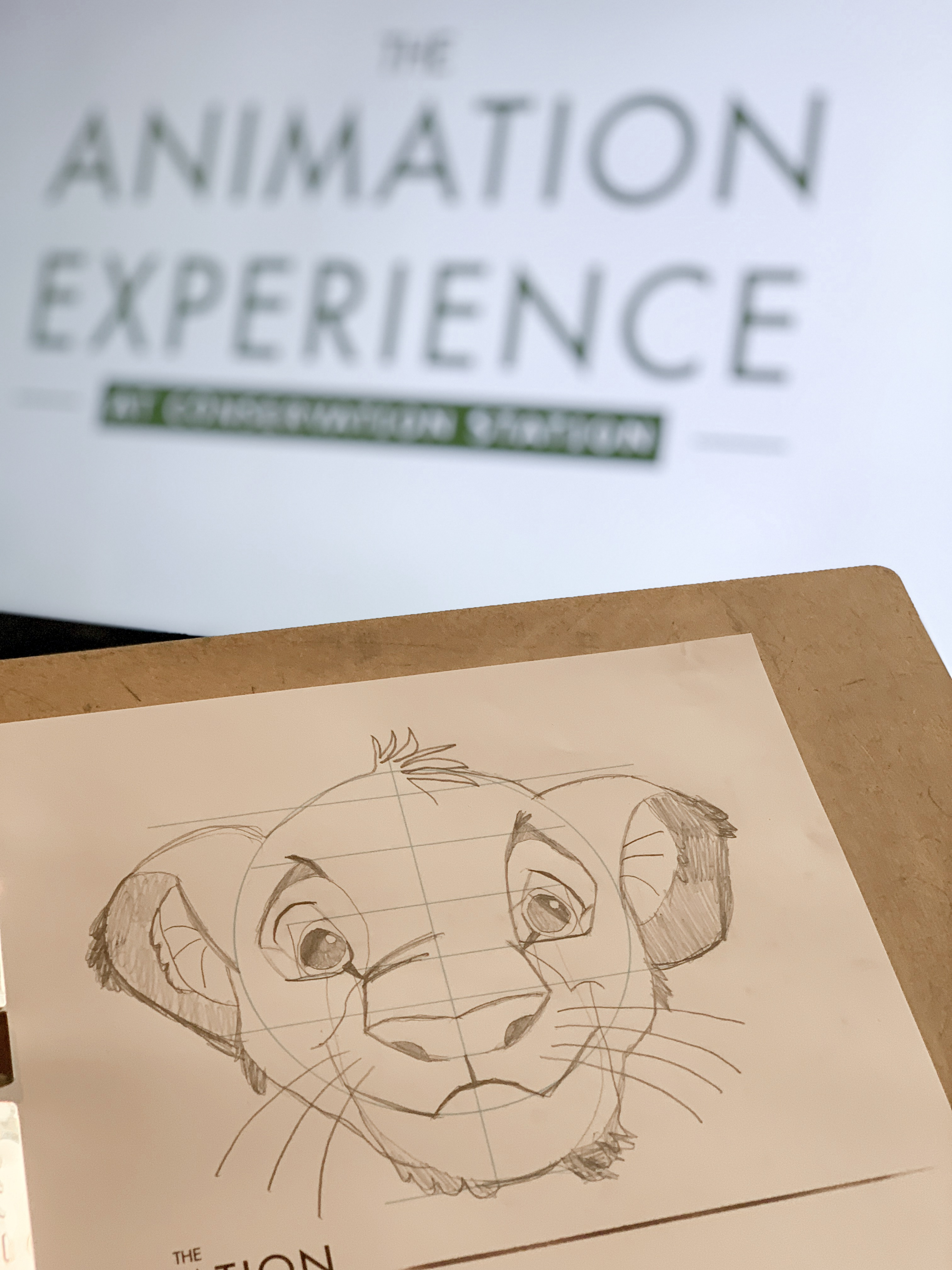 Art Of Animation Hotel Drawing Class Age Limit