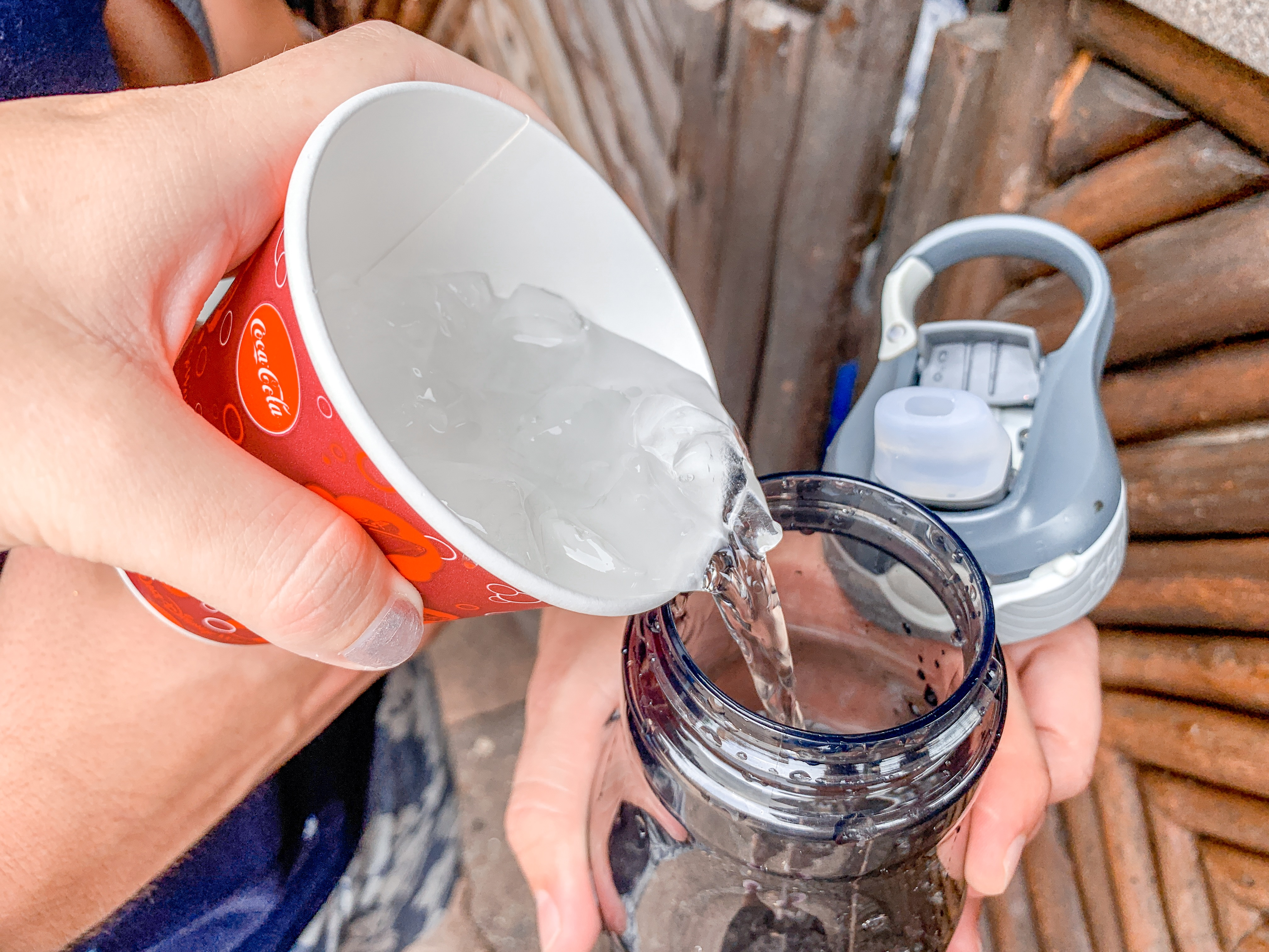 Ice water is free at Disney World.