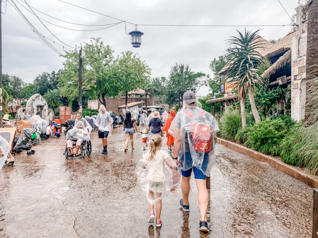 Tips for saving money at Disney - buy rain ponchos elsewhere.