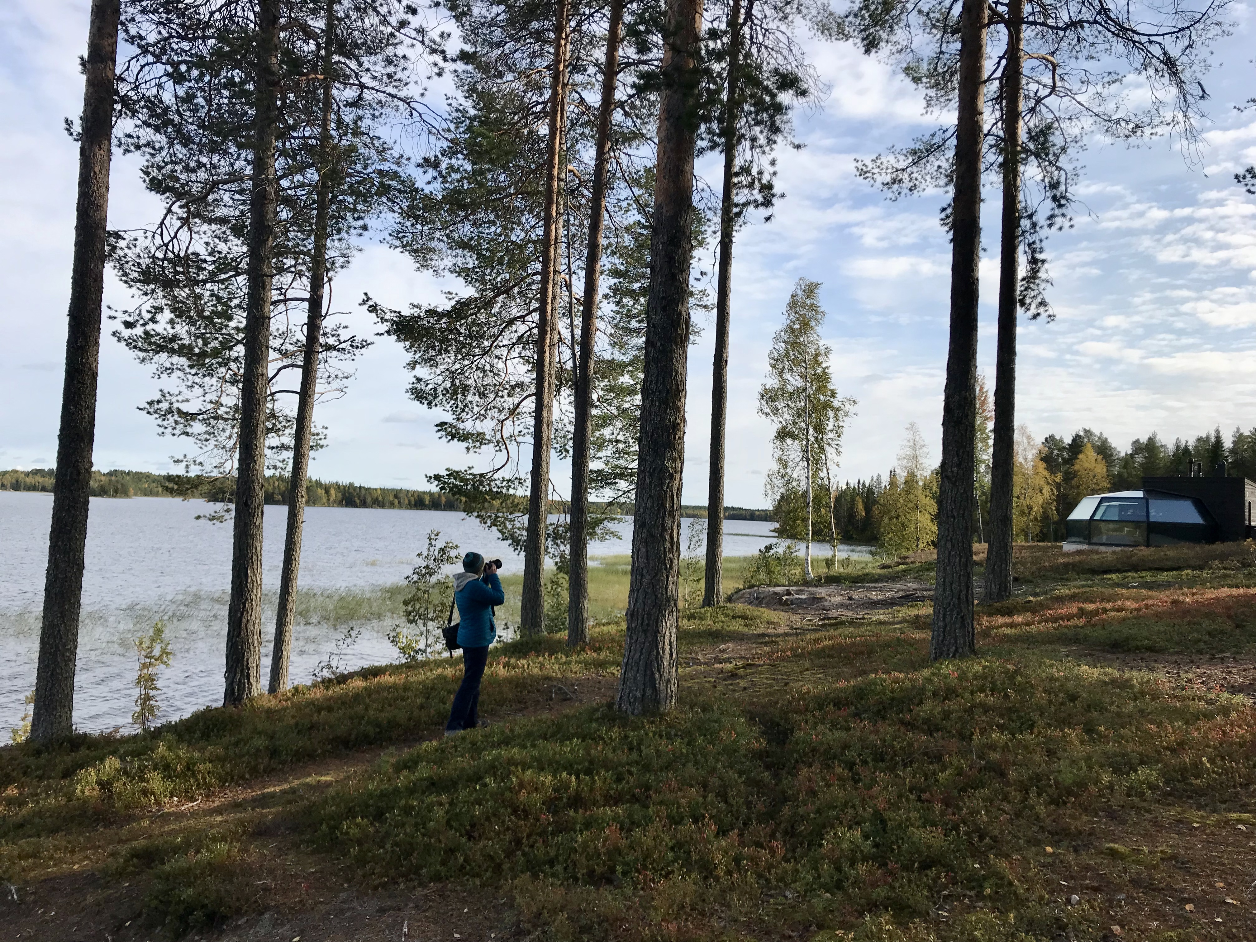 Things to do in Finland - Lapland
