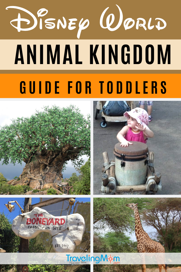 Taking toddlers to Disney's Animal Kingdom? Get all the best tips on toddler-friendly shows, character greetings and nap spots. This is all the must-know info with ride guide and toddler-friendly dining options at the Disney World theme park! #TMOM #Disney #DisneyWorld #AnimalKingdom #ToddlerTravel #DisneyTips #WDW | TravelingMom | Travel with Babies | Family Travel | Florida | Orlando | Toddlers Travel
